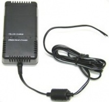 Ansmann LiFePO4 charger with UK and Euopean adapter